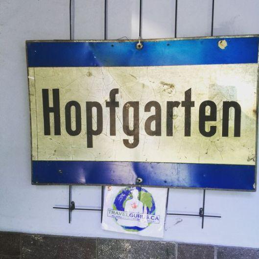hopfgarten 4
